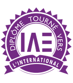 vignette-formation-internationale